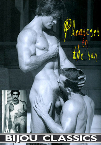 Pleasures In The Sun 1980