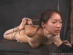 Insex – Student 4's Test