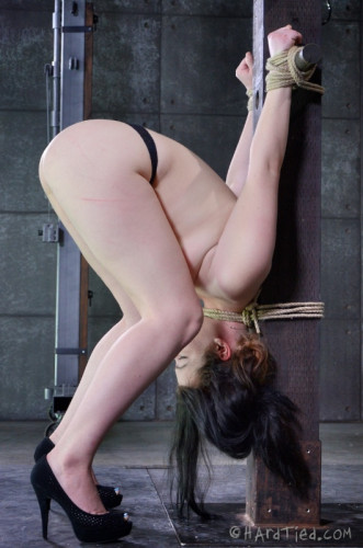 HT — Tied Up — Harley Ace, OT — June 18, 2014 - HD