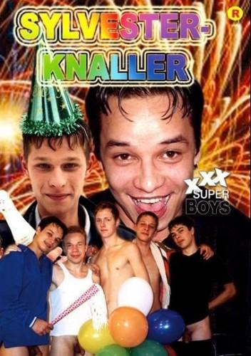 Sylvester-Knaller