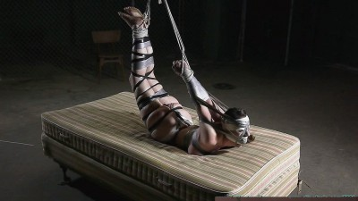 Serene's Bondage Dream - Hogtaped 1-3