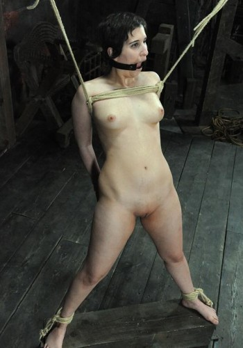 BDSM, Device, Domination, Canning, Torture, Spanking, Hummulation