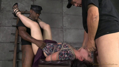 Amy Faye, Matt Williams, Jack Hammer