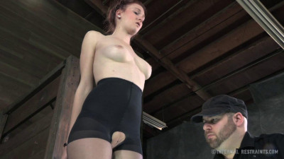 Whipped, Bound and Boxed - Ashley Lane