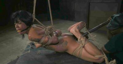 Jessica Creepshow - little bit of pain
