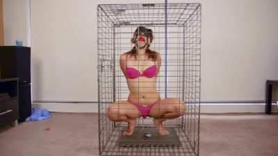 I Locked Myself In A Cage