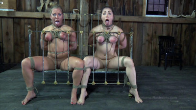 Dia Zerva Double Bagged - BDSM, Humiliation, Torture