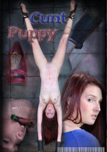 Cunt Puppy - Ashley Lane