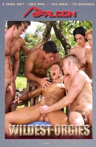 Description Wildest Orgies 3