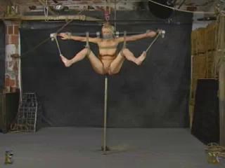 Insex Pole