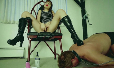 Pooch Gets a Thirst Quenching Squirt