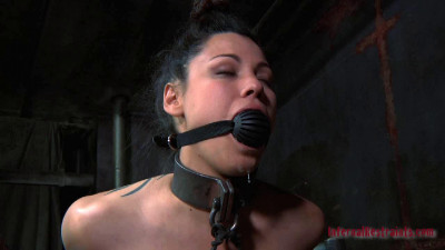 IR – Apr 8, 2011 – Rigid Part Two – Dana Vixen