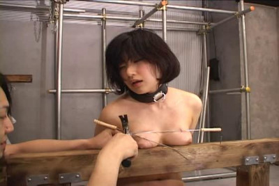 Japanese Tits Nailin