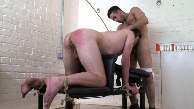 Session 203 - Lick My Arsehole Before I Cane You!