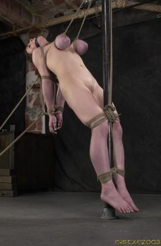 Insex - Bedding Piglet (Piglet) 2003