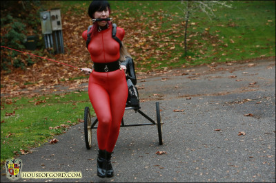 Houseofgord - Quinn's Obedient Pony Girl - Part IV  HD 2015