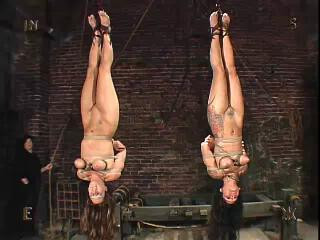 Insex – 120 And 33 (Live Feed From March 20, 2004) – 120, 33