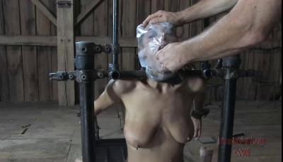 Humilation Slut Part Two Kali Kane