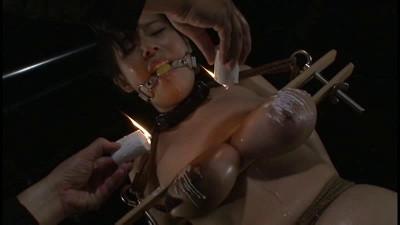 Torture Shibaki Whip
