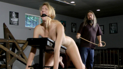 Ashley Lane Crash Test Slave (2016)