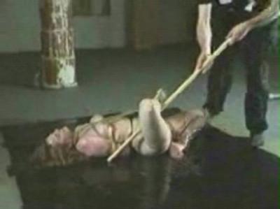 Insex - Pig