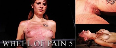 ElitePain - Wheel of Pain 5 HD 2014