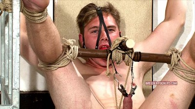 Extreme Bondage, Testicles And Dick Pegged
