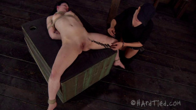 Hardtied – Feb 20, 2013 – Caned And Trained – Katharine Cane