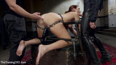 The Making Of An Anal Slave, Sophia Locke Day Three