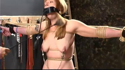 Katslut Nipple-Toe Torture