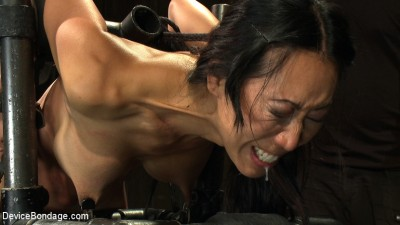 Every last orgasm will be had — a bondage crusade