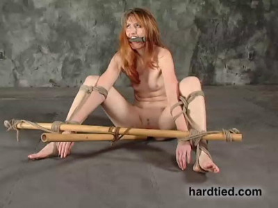 She's ravished, stripped, and lashed against the wall, legs spread wide, and thighs tied out hard