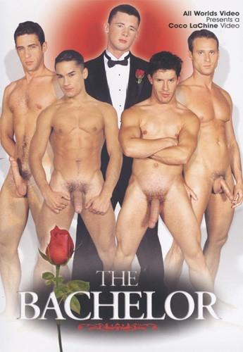 The Bachelor DVDRip