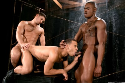 Description RS-Trelino & Tyson Tyler And Dato Foland