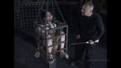 Caged Bonus  (23 Sep 2015)