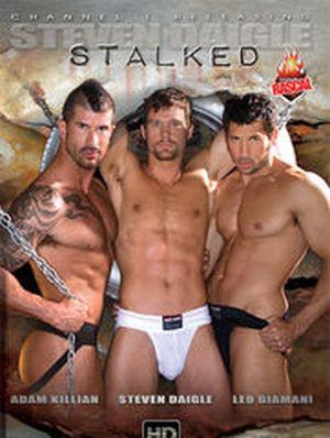 Steven Daigle: Stalked