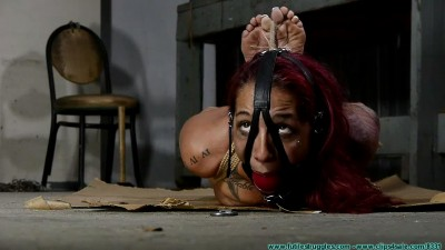 Stefania Box Hogtied - Parts 1-2