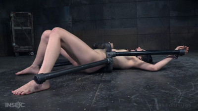 Rita Rollins High – BDSM, Humiliation, Torture