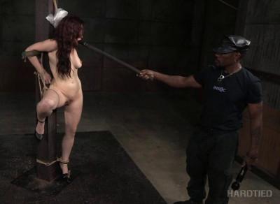 Torture & Humiliation