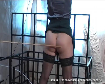 Ariel Loves A Good Spanking, Whipping Or Caning… (2013)