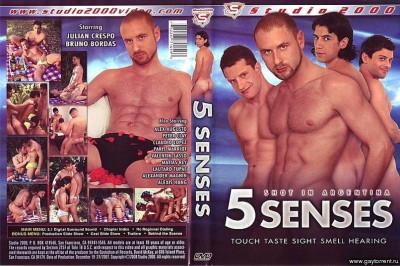Studio 2000 - 5 Senses
