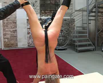Extreme upside down suspension bullwhipping of jane!
