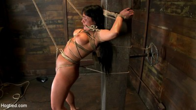 Description Hot sexy Hawaiian is bound to a pole, lifted to her tip toes with a brutal crotch rope. Made to cum!