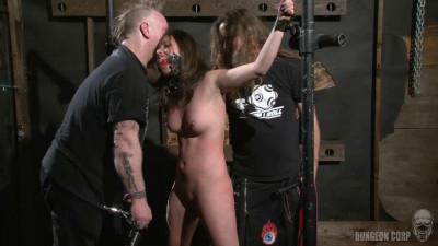 The Whip Chamber – Casey Calvert