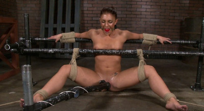 Description Taped, Tied and Tantalized