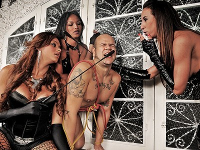 Hot and Kinky Shemale Domination