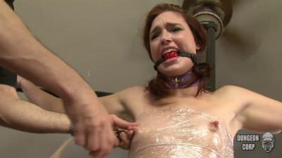 Punishments And Rewards Jodi Taylor