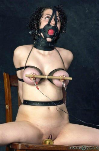 Insex - 7 Times Coming - Spacegirl, Donna