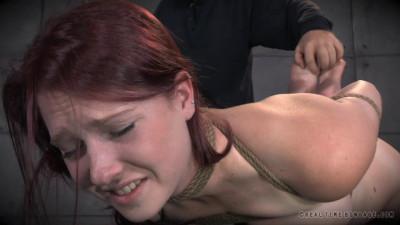 Realtimebondage - Jun 07, 2014 - Ashley Lane - Cunt Puppy Part 2 - Ashley Lane