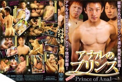 Bravo! Prince of Anal (HD) 期間限定特価】アナルのプリンス Discs 2/2